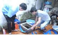 Thau rửa bể nước ăn, bể ngầm, inox 0976544885 tại Trần Đăng Ninh