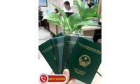 Dịch vụ làm Visa đi Myanmar ở đâu tốt, giá rẻ, uy tín đảm bảo