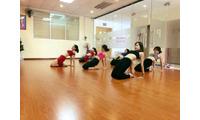 Địa chỉ học bellydance (múa bụng) uy tín và chất lượng