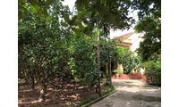 Nhà Vườn rất phù hợp làm nhà nghỉ cuối tuần, thanh bình yên ả