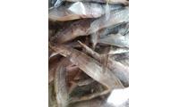 Khô cá chạch, cá lóc