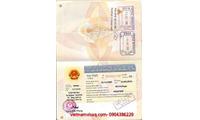 Dịch vụ gia hạn thị thực-visa-thẻ tạm trú cho trẻ quốc tịch nước ngoài