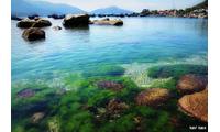 Tham quan đảo Bình Ba